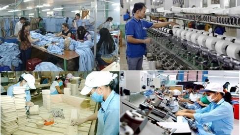 Mengembangkan peranan penting dari sektor ekonomi swasta-Menjadi tenaga pendorong bagi perekonomian - ảnh 1