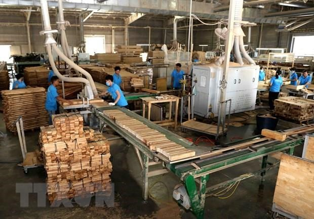 Mendorong badan usaha melaksanakan tanggung-jawab sosial dalam pengolahan kayu dan hasil perikanan - ảnh 1