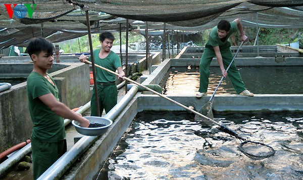 ໄຂງານວາງສະແດງສາກົນກ່ຽວກັບຂະແໜງລ້ຽງປູກສິນໃນນ້ຳ Aquaculture ຫວຽດນາມ 2017 - ảnh 1