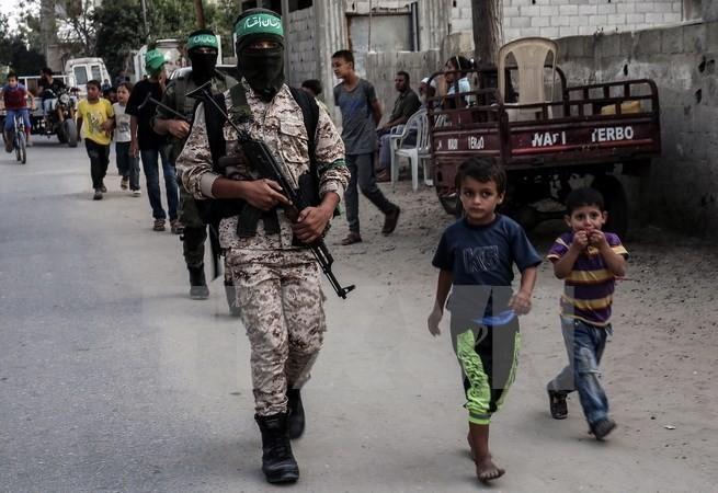 ປາແລດສະຕີນ:ຂະບວນການ Hamas ປະຕິບັດບາດກ້າວມອບໂອນທຳອິດ - ảnh 1
