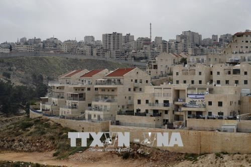 ປາແລດສະຕີນ ຕຳໜິຕິຕຽນຂໍ້ສະເໜີຂອງທ່ານປະທານາທິບໍດີ ອາເມລິກາ ຍົກເລີກໃສ່ບັນຫາ Jerusalem ອອກຈາກບັນດາການເຈລະຈາ - ảnh 1