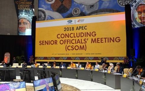 ກອງປະຊຸມສະຫຼຸບ ບັນດາເຈົ້າໜ້າທີ່ອາວຸໂສ APEC  ກະກຽມໃຫ້ແກ່ສັບປະດາຂັ້ນສູງ APEC 2018 - ảnh 1