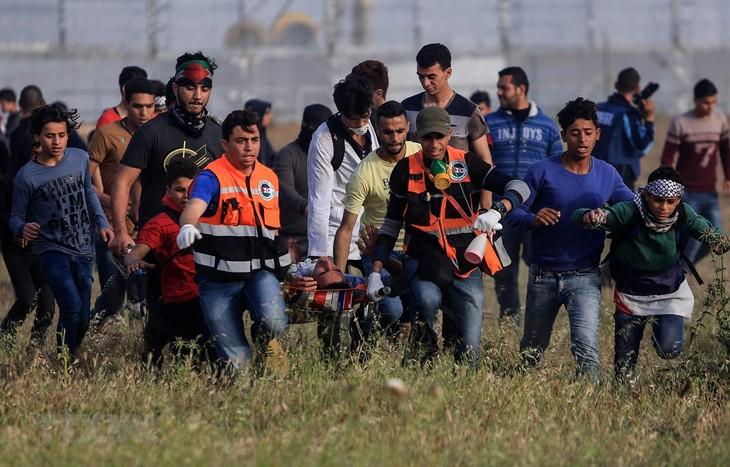 ຫວຽດນາມ ຮຽກຮ້ອງຟື້ນຟູບົດບາດຂອງອຳນາດການປົກຄອງ ປາແລັດສະຕິນ ຢູ່ ເຂດ Gaza - ảnh 1