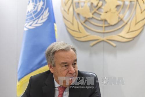 Máximo titular de la ONU pide desnuclearización global - ảnh 1