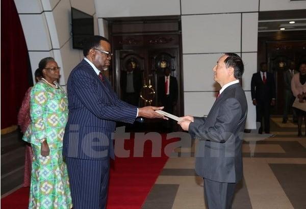 Vietnam y Namibia afirman determinación de profundizar sus relaciones - ảnh 1