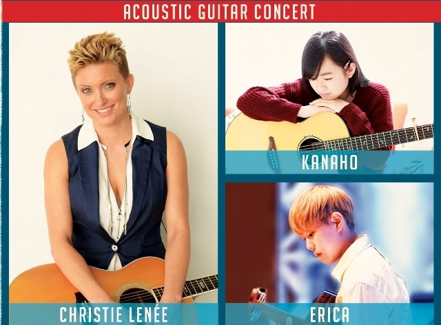 Vietnam y China co-celebrarán el Festival Internacional de Guitarra Fingerpicking - ảnh 1