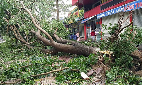 El centro de Vietnam afronta la tormenta de Talas - ảnh 1