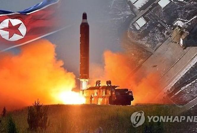 Países del mundo piden a Corea del Norte cumplir las resoluciones de la ONU - ảnh 1