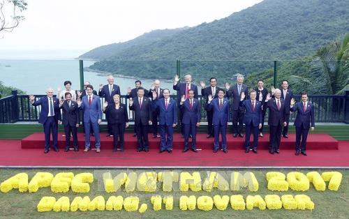 Prensa malaya valora altamente el papel de Vietnam en el Año del APEC 2017 - ảnh 1