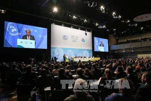 La COP 23 insiste en cumplir el Acuerdo de París - ảnh 1