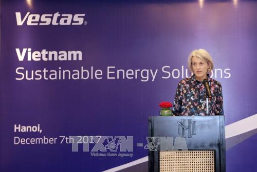 Vietnam y Dinamarca cooperan en el desarrollo de la energía eólica - ảnh 1