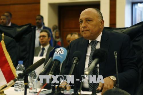 Comunidad internacional insta a buscar solución pacífica para la crisis siria - ảnh 1