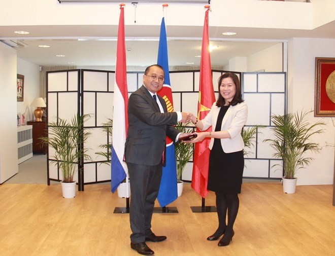 Embajadora vietnamita en Holanda asume presidencia rotativa de Asean en La Haya - ảnh 1