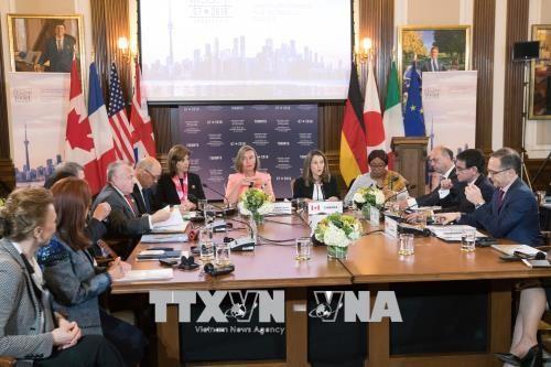 Países del G7 prometen trabajar juntos ante amenazas globales - ảnh 1