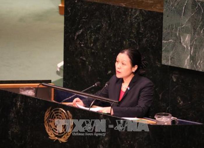 Vietnam pide más esfuerzos a la ONU para resolver el conflicto Israel-Palestina - ảnh 1