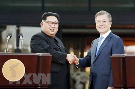 Declaración de Panmunjom promueve la esperanza de paz para las dos Coreas - ảnh 1