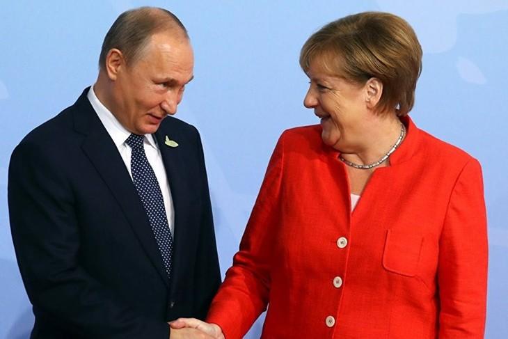 Varios países en el mundo interesados en fortalecer relaciones con Rusia - ảnh 1