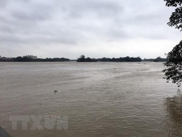 Vietnam prueba gestionar cuencas fluviales con otros países de Asean - ảnh 1