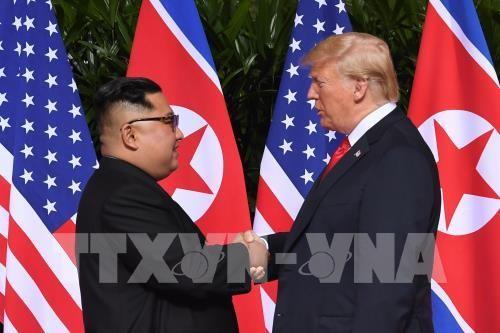 Apretón de manos ante la Cumbre Estados Unidos-Corea del Norte - ảnh 1