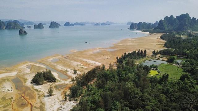 Democracia y objetividad en la construcción jurídica en Vietnam - ảnh 1