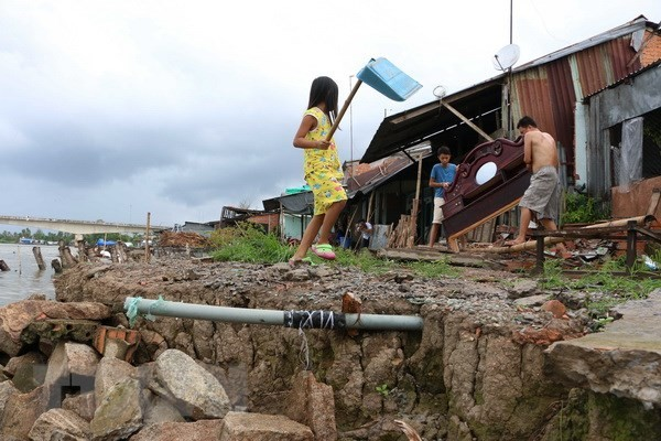 Vietnam reitera compromisos a trabajar con la región para enfrentar el cambio climático - ảnh 1