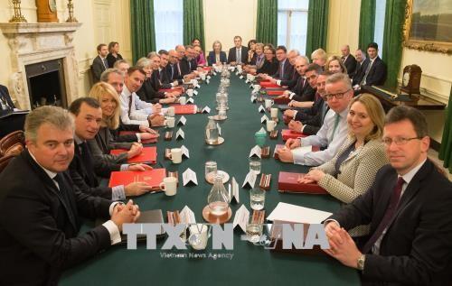 Reino Unido idea un tercer modelo de relación comercial con UE - ảnh 1