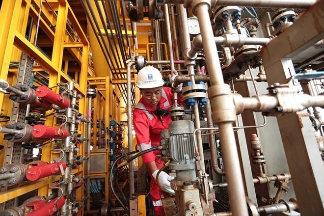 Grupo de petróleo de Vietnam sobrecumple metas en primer semestre - ảnh 1