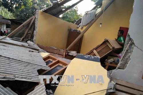 Al menos 10 personas murieron tras el terremoto en Indonesia - ảnh 1