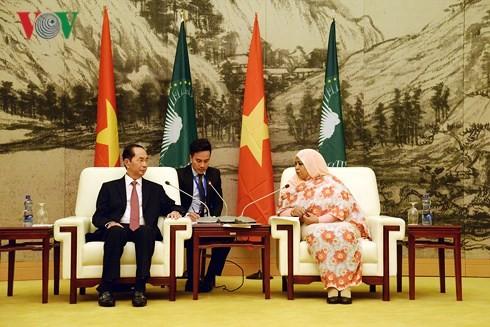 Vietnam concede importancia al fomento de nexos con África, afirma el presidente de Vietnam - ảnh 1