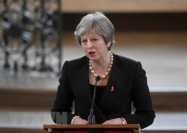 Theresa May defiende su plan sobre el Brexit pese a presiones internas - ảnh 1