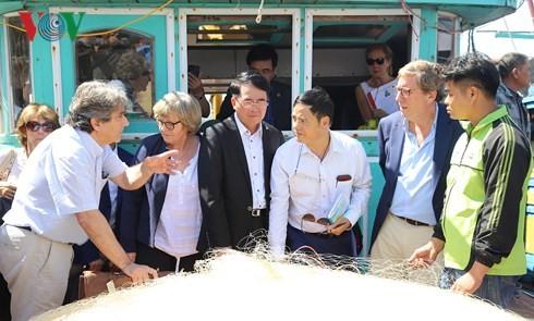 Parlamento Europeo verifica actividades de pesca en Hai Phong - ảnh 1