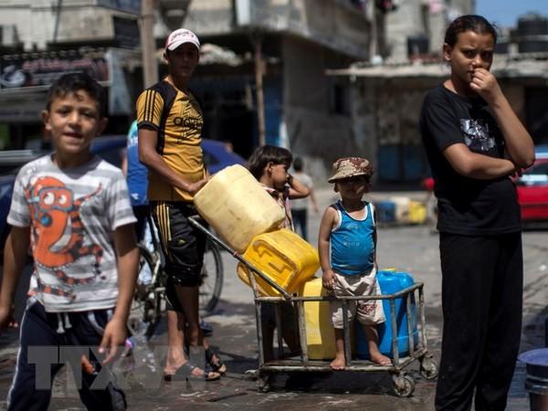 Titular de la ONU resalta importancia de la solidaridad con el pueblo palestino - ảnh 1