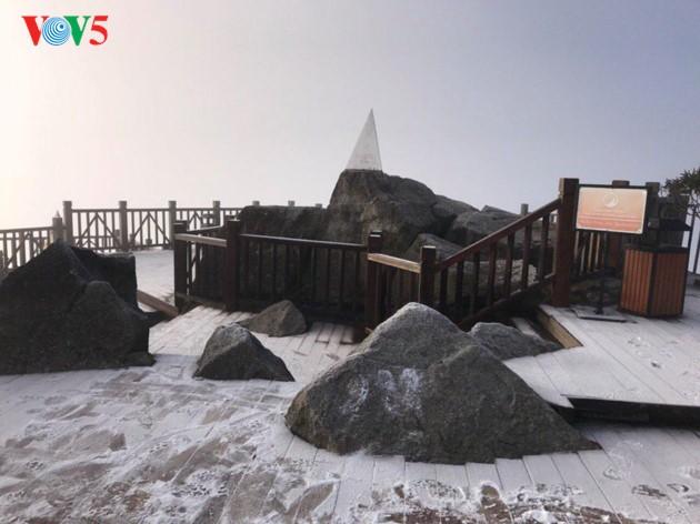 Montaña Fansipan ataviada por la nieve - ảnh 1
