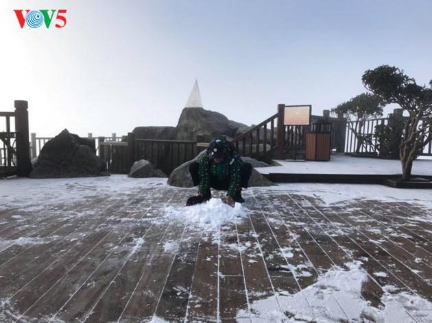 Montaña Fansipan ataviada por la nieve - ảnh 4
