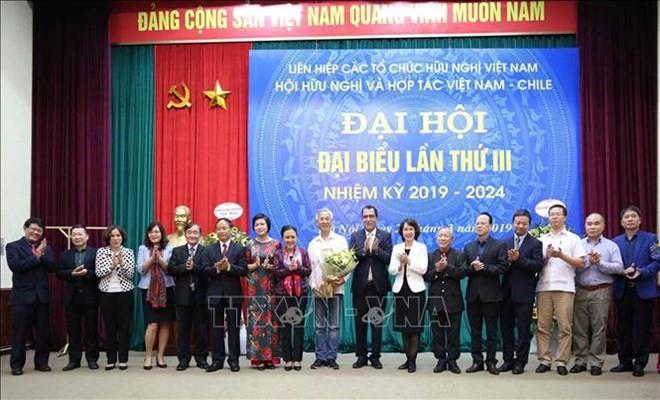 Vietnam y Chile afianzan la amistad y la solidaridad - ảnh 1