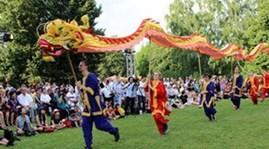 ドイツで越文化フェスティバル - ảnh 1