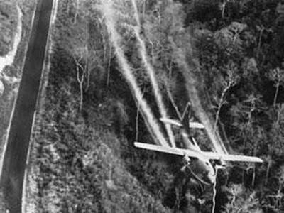 ベトナムの枯葉剤被害者への公平を求めること - ảnh 2