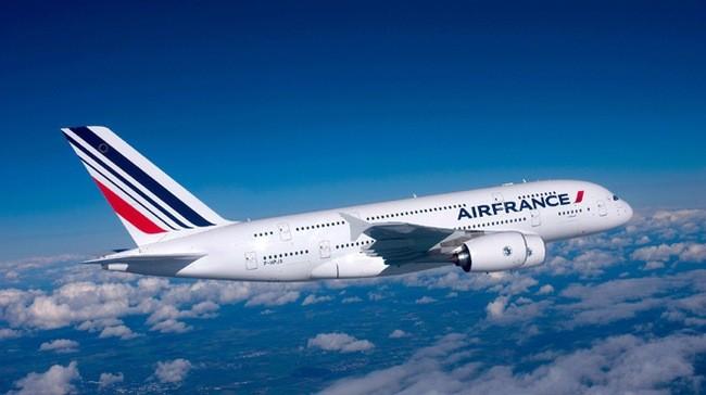 仁川発エールフランス機、ロシアに緊急着陸 - ảnh 1