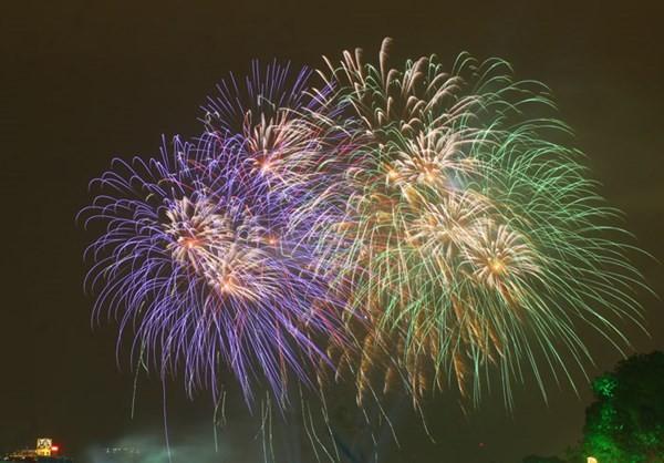 各国も旧正月を祝う - ảnh 1