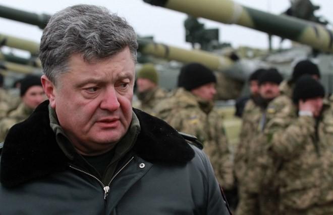 ウクライナ、平和維持軍を要請 - ảnh 1