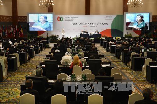ベトナム、アジア・アフリカ協力を促進 - ảnh 1