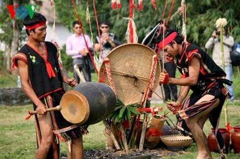 バナ族の平安を祈る儀式 - ảnh 11