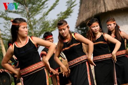 バナ族の平安を祈る儀式 - ảnh 12