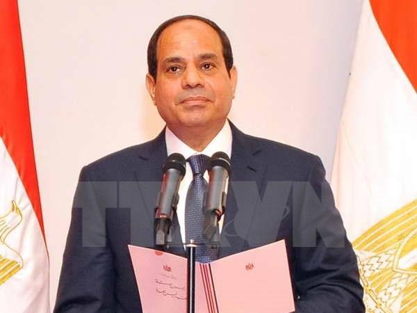 エジプト、ASEANとの協力を促進 - ảnh 1