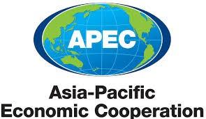 APEC財務相会合開幕、中国発の不安を懸念 - ảnh 1