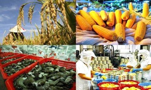食糧安全保障と農村部の変貌に取り組む農業部門 - ảnh 1