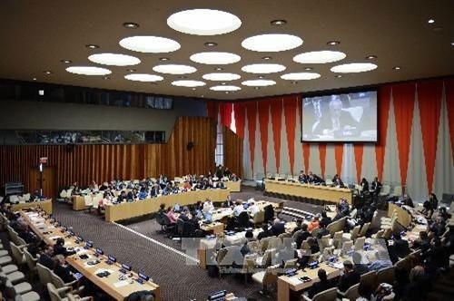 ベトナム、ECOSOCの理事国に選出 - ảnh 1