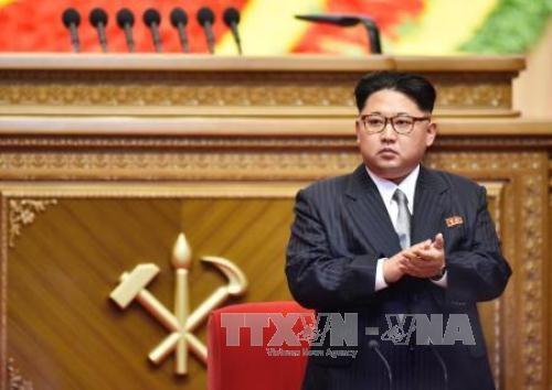 核戦力開発と経済建設を打ち出す朝鮮労働党大会 - ảnh 2