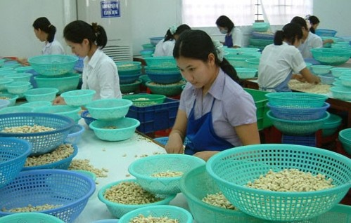 ベトナム企業、オーストラリア進出チャンスを - ảnh 1