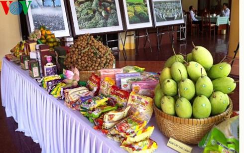 外国へ出荷されるドンタップ省の農産物 - ảnh 1